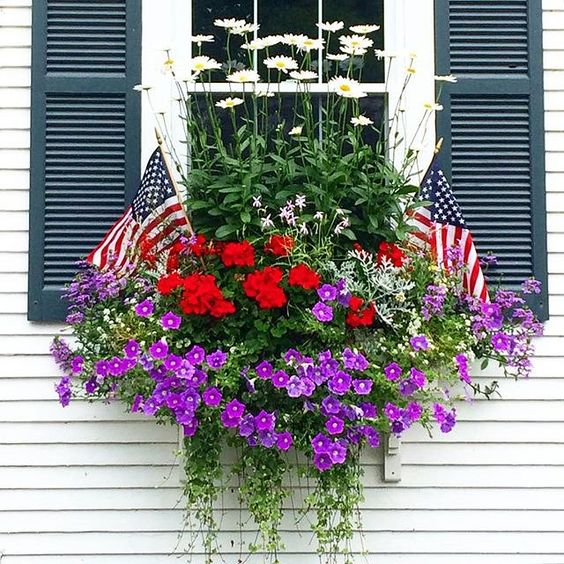 Window box in Nantucket with American Flags