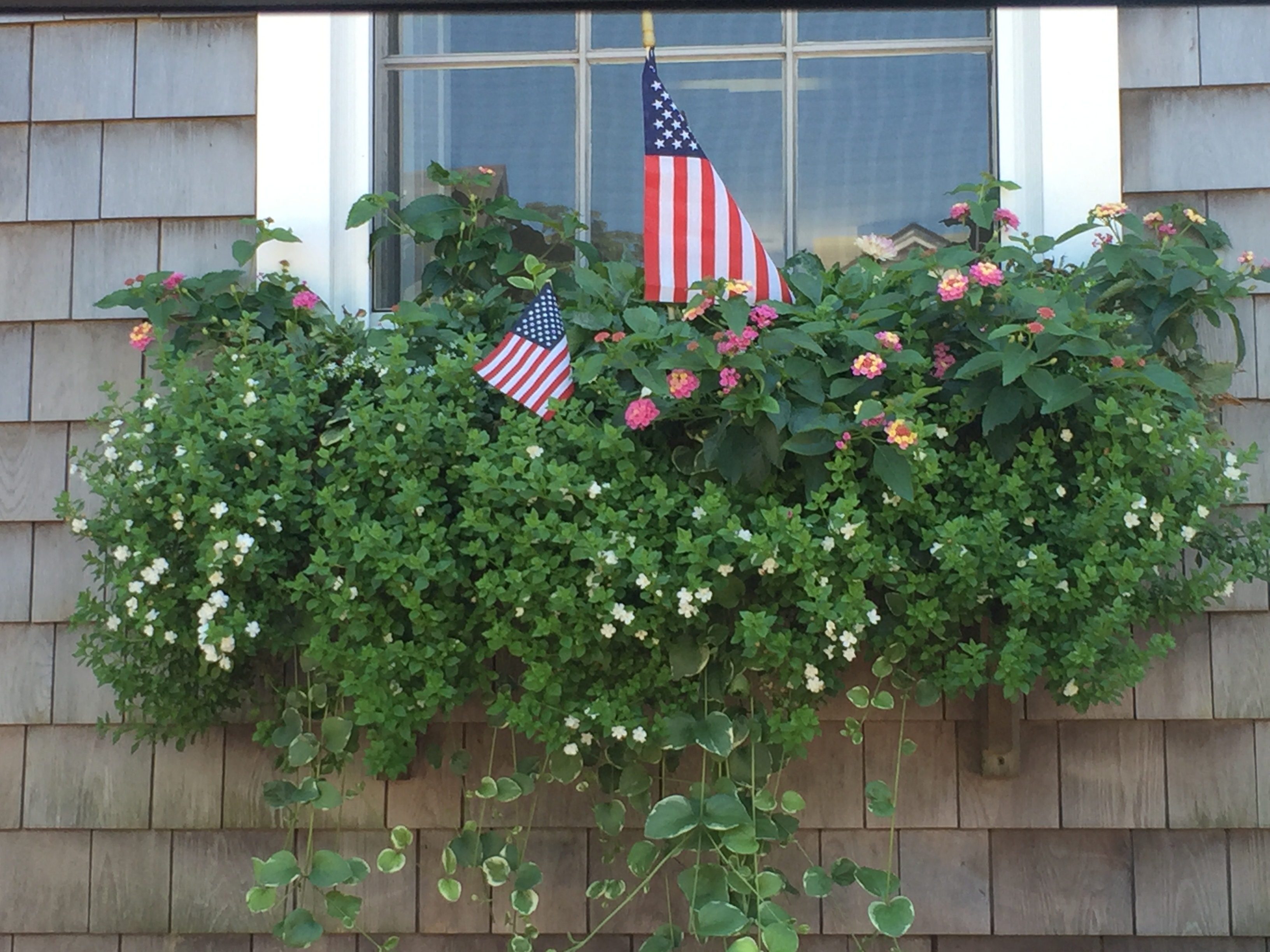 Nantucket flower box 2