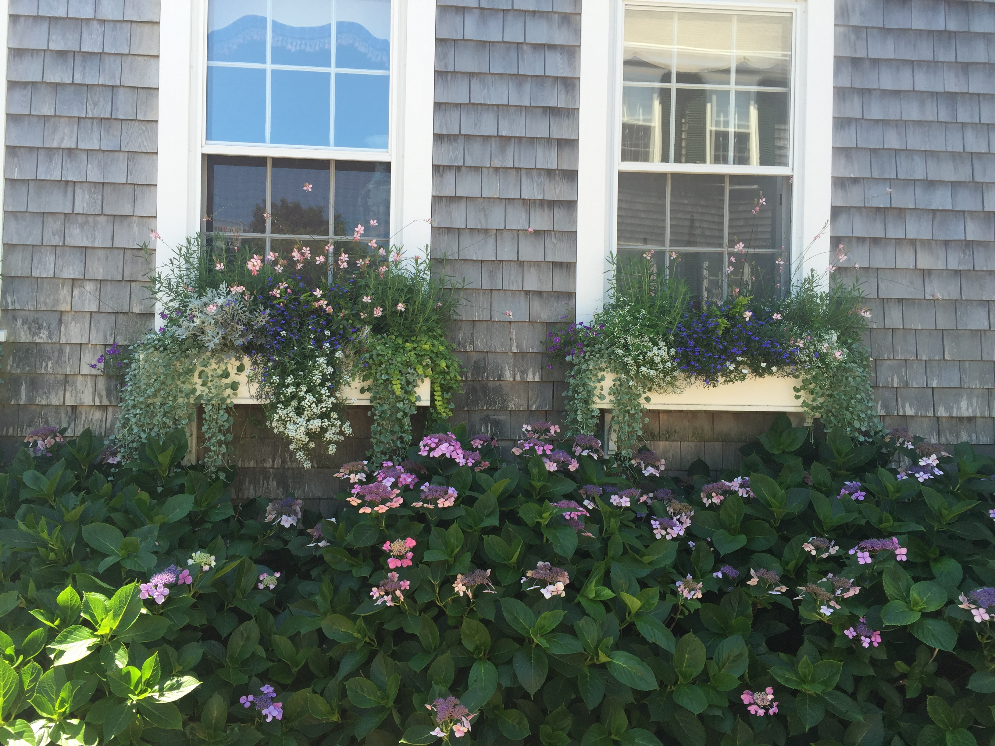 Nantucket flower box 6