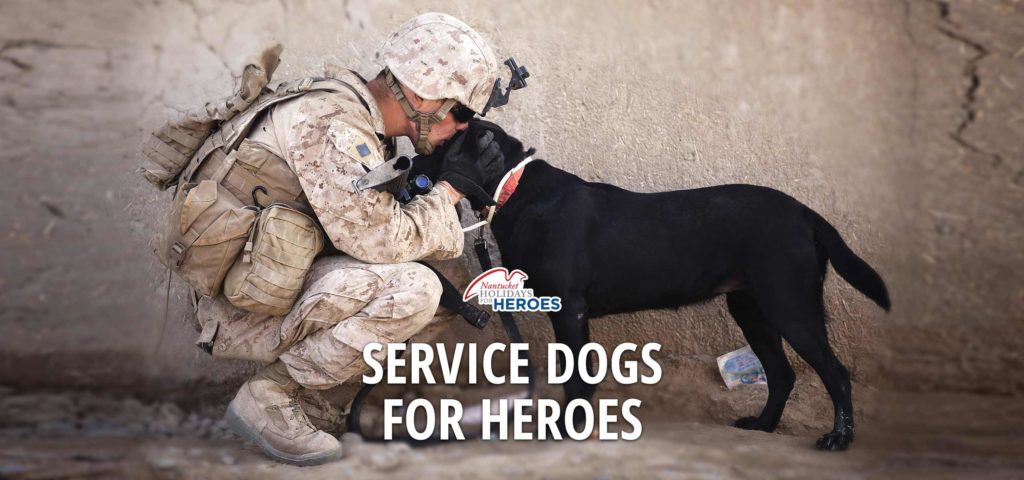 service-dogs2